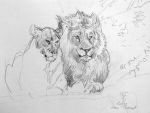 Löwenpaar, 2011, Zeichnung - Bild von Stefan Bönsch, https://stefanboensch.de