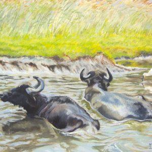 Wasserbüffel mit Löffler