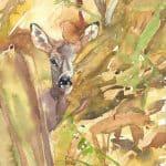 Wild im Kornfeld - Ausstellung Apajpuszta / Ungarn 2010 - https://stefanboensch.de