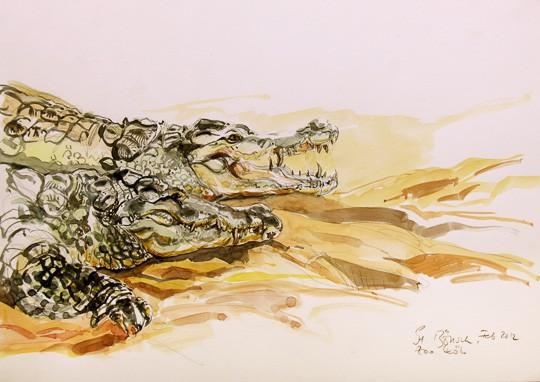 Ruhende Krokodile, 2012, Aquarell - Bild von Stefan Bönsch, https://stefanboensch.de