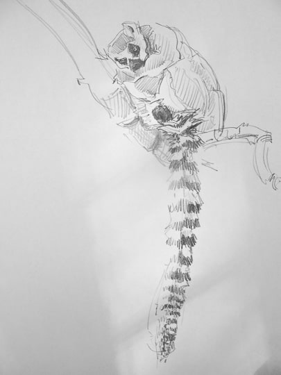 Lemure, Skizze, 2013, Zeichnung - Bild von Stefan Bönsch, https://stefanboensch.de