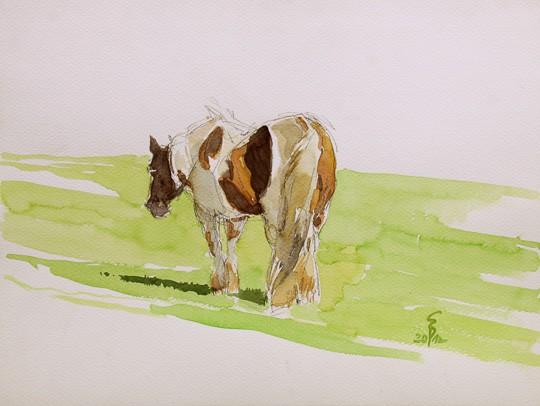 Pferd im Sonnenlicht, 2012, Aquarell - Bild von Stefan Bönsch, https://stefanboensch.de