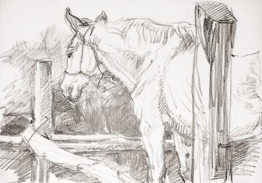 Pferd im Stall, 2008, Wachsstift - Bild von Stefan Bönsch, https://stefanboensch.de