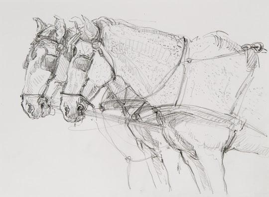 Kutschenpferde, 2010, Zeichnung - Bild von Stefan Bönsch, https://stefanboensch.de