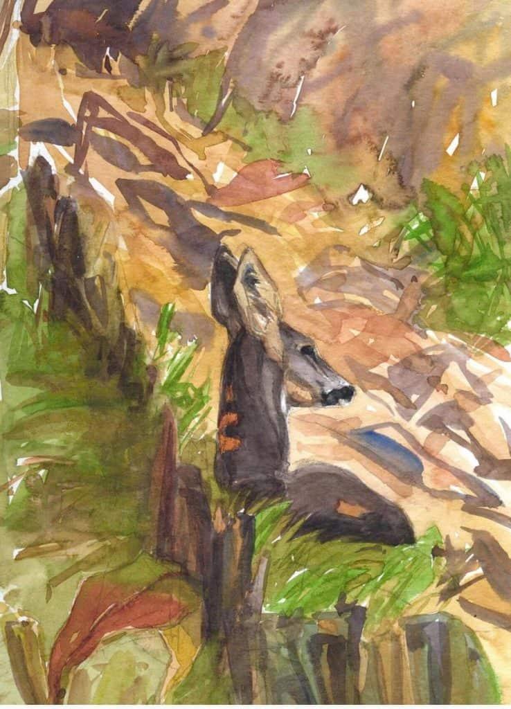 Rastendes Wild - Ausstellung Apajpuszta / Ungarn 2010 - https://stefanboensch.de
