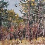 Vorfrühling im Wald mit Ringeltaube, 2009, Aquarell - Bild von Stefan Bönsch, https://stefanboensch.de