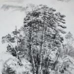 Schottischer Pinienwald - Ausstellung Apajpuszta / Ungarn 2010 - https://stefanboensch.de
