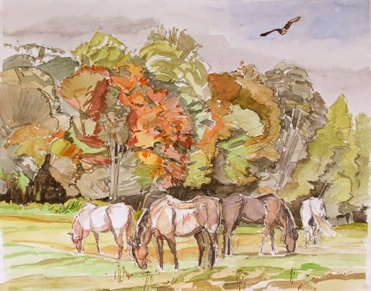 Seeadler über Pferdekoppel, 2011, Aquarell - Bild von Stefan Bönsch, https://stefanboensch.de