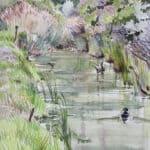 Stockentenerpel auf ruhigem Gewässer, 2013, Aquarell - Bild von Stefan Bönsch, https://stefanboensch.de