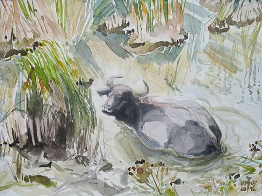 Wasserbüffel bei der Abkühlung, 2012, Zeichnung - Bild von Stefan Bönsch, https://stefanboensch.de