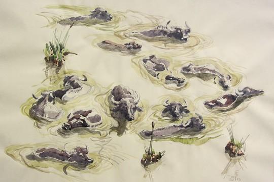 Wasserbüffelherde beim Bad, 2013, Aquarell - Bild von Stefan Bönsch, https://stefanboensch.de