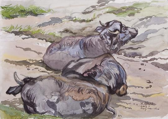 Ruhende Wasserbüffel, 2009, Aquarell - Bild von Stefan Bönsch, https://stefanboensch.de
